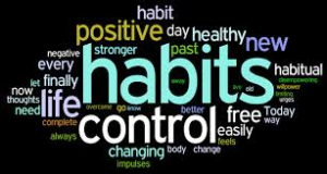Article 2 habits
